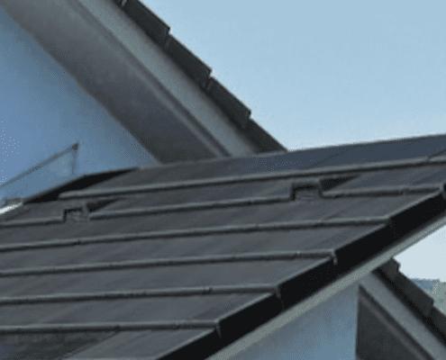 Ein Vogel auf einem Dach