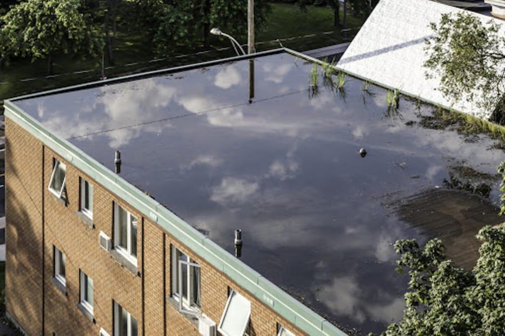 Gewerblicher Flachdachwasserschaden