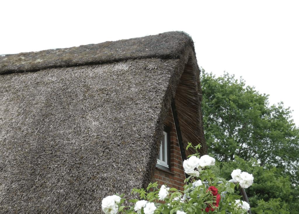 Reetdächer mit einer sehr guten Energieeffizienz und Dachdämmung