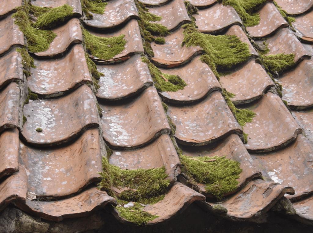 ein altes, reparaturbedürftiges Satteldach
